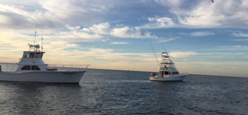 Two Fishing Charters at See