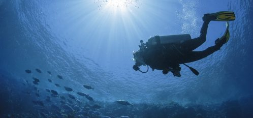 Underwater Museum of Art