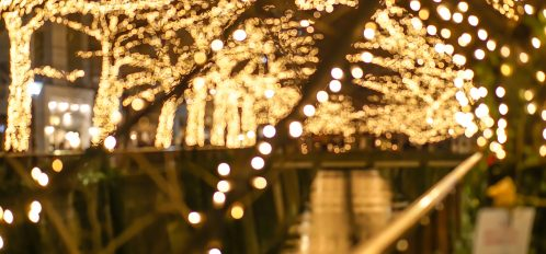 Christmas lights at Sparkling Wine and Holiday Lights Festival